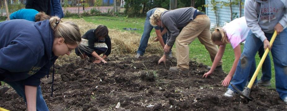 image of multiple students digging holes in a garden