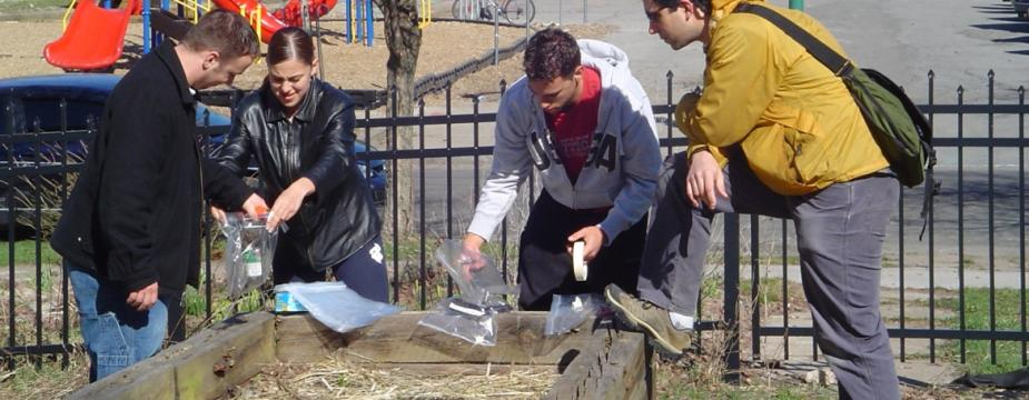 one woman and three men are standing around a wooden box conatining soil hay and grass. the three are holding plastic bags and they are standing infront o a playground.